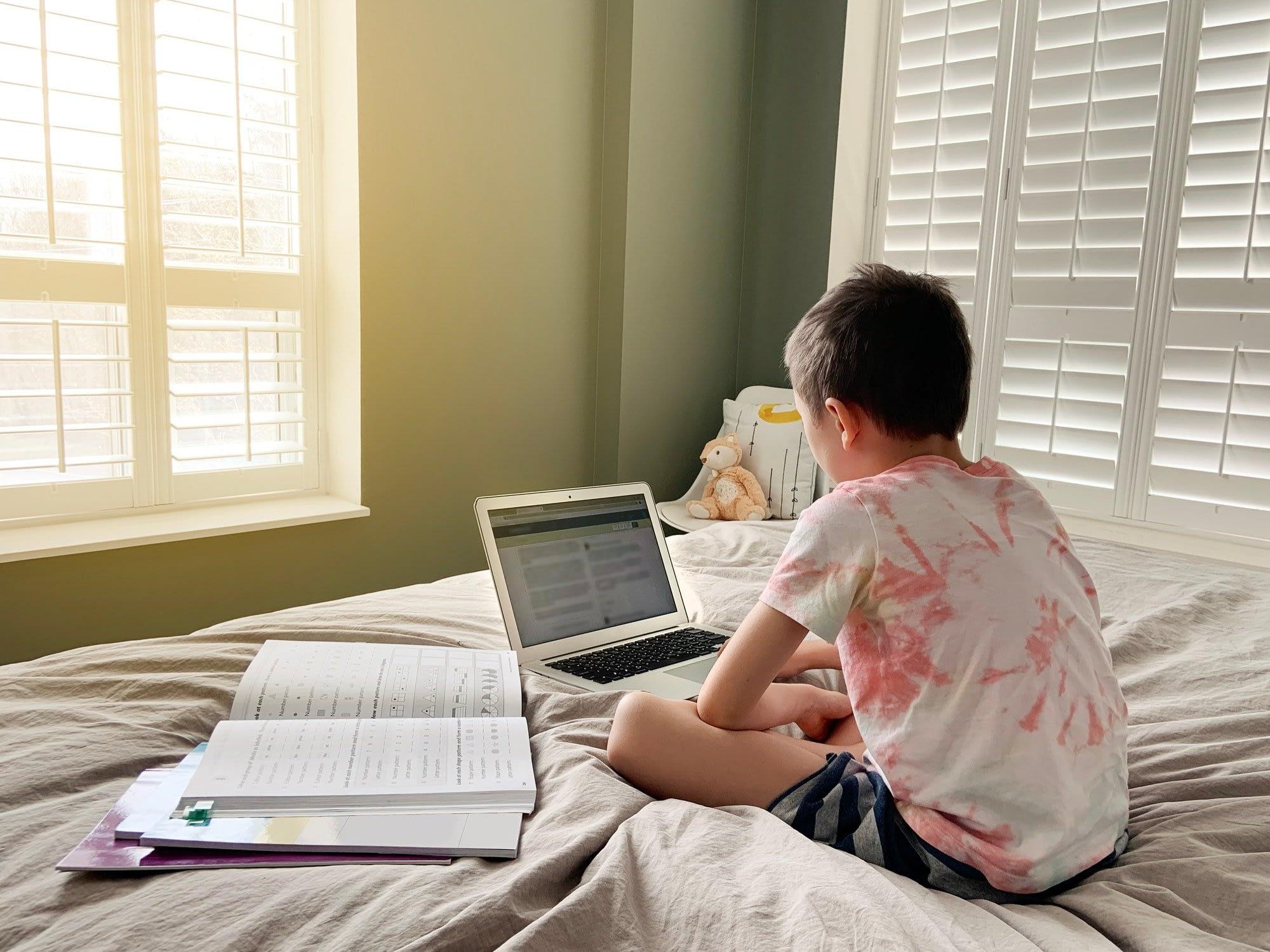 boy; child; education; class; home; learn; online; Internet; homeschooling; school; virtual; laptop;